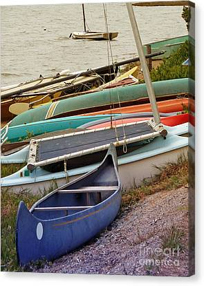 Sailboats Canvas Print by Methune Hively