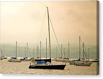 Sailboats Moored In The Harbor Canvas Print by Ann Murphy