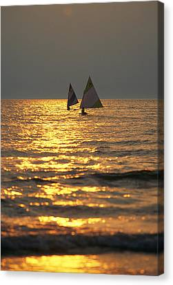Sailboats Travel Across The Golden Canvas Print by Skip Brown