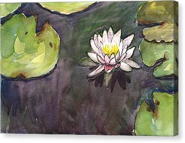 Waterlily Canvas Print - Sailing Bloom by Christine Camp