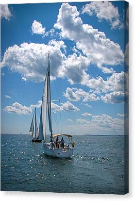 Canvas Print featuring the photograph Sailing by Cindy Haggerty