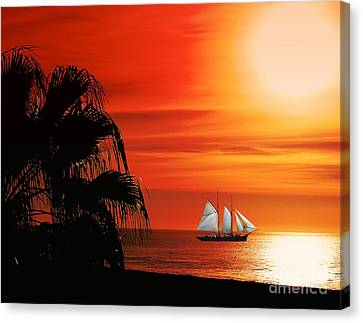Sailing In Mexico Canvas Print