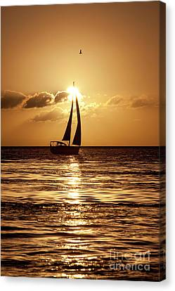 Sailing In The Sun Canvas Print by Keith Kapple