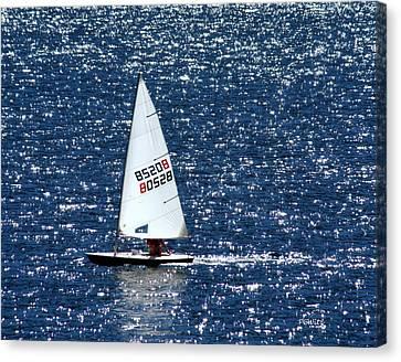Sailing Canvas Print by Patrick Witz