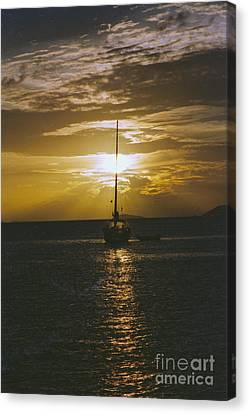Sailing Sunset Canvas Print by William Norton
