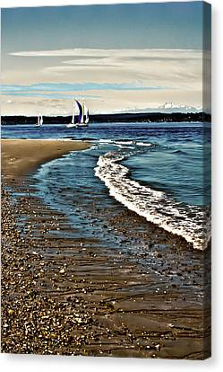 Sailing The Puget Sound Canvas Print by David Patterson