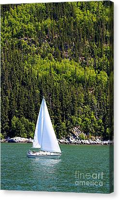 Canvas Print featuring the photograph Sailing The Wilderness by Laurinda Bowling