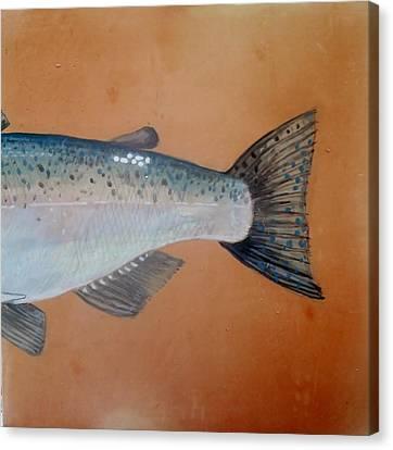 Salmon 2 Canvas Print by Andrew Drozdowicz