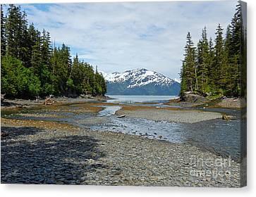Salmon Run Lagoon Canvas Print