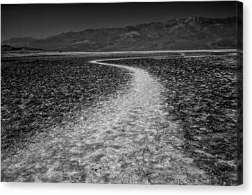 Salt Road Canvas Print