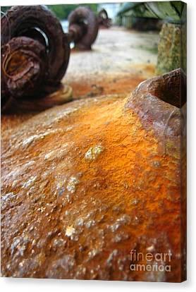 Canvas Print featuring the photograph Salt Water Rust by Joe Finney