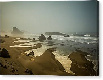 Canvas Print featuring the photograph Salty Fingers by Randy Wood