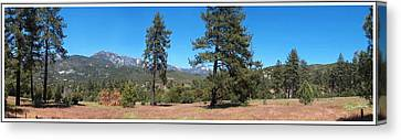 San Bernardino Forest Vista Canvas Print by Glenn McCarthy Art and Photography