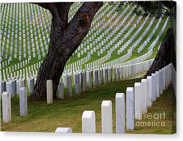 San Diego Military Memorial  4 Canvas Print by Bob Christopher