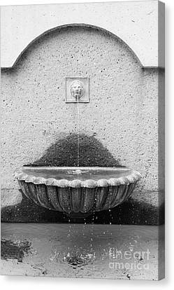San Francisco Crocker Galleria Roof Garden Fountain - 5d17895 - Black And White Canvas Print by Wingsdomain Art and Photography