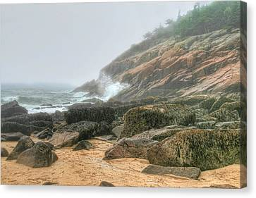Sand Beach - Acadia Canvas Print by Mary Hershberger