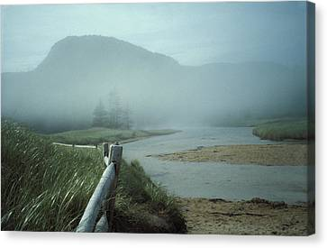 Sand Beach Fog Canvas Print by Brent L Ander