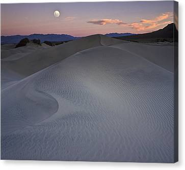 Sand Dune And Moon Death Valley Canvas Print
