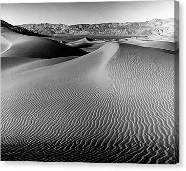 Sand Dune-death Valley Canvas Print