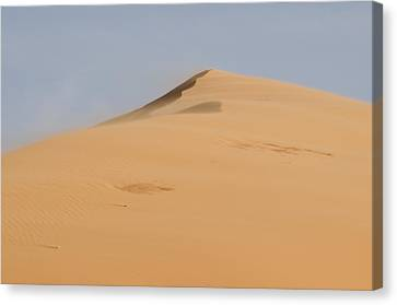 Sand Dune Canvas Print by Heather Applegate