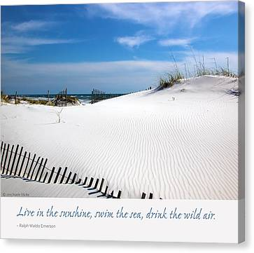 Sand Dunes Dream 3 Canvas Print by Marie Hicks