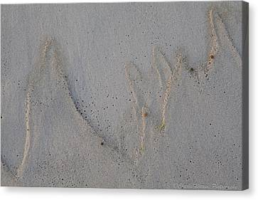 Sand Mountains Canvas Print by Charles Warren