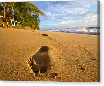 Sand Prints Canvas Print by Tim Fitzwater