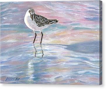 Sandlinger At Sunset Canvas Print by Jeanne Kay Juhos
