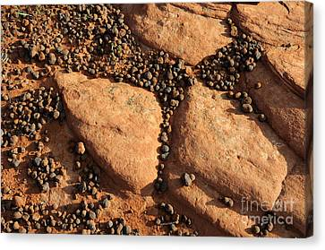 Sandstone And Pebbles Canvas Print