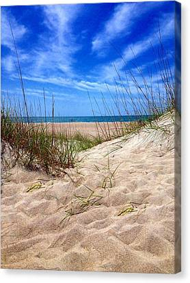 Sandy Dunes Canvas Print by Joan Meyland