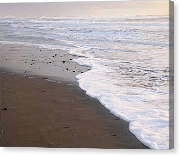 Sans Footprints Canvas Print