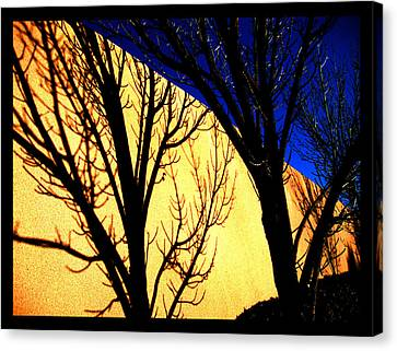 Canvas Print featuring the photograph Santa Fe Afternoon by Susanne Still