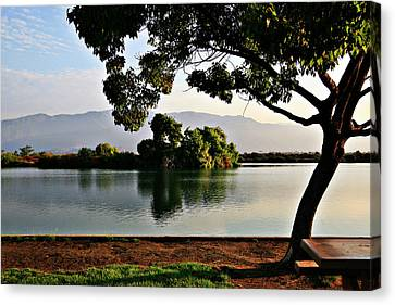 Dawn On The Lake Canvas Print