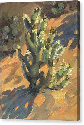 Santa Rosa Cholla Canvas Print by Diane McClary