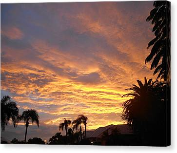 Canvas Print featuring the photograph Sarasota Sunset by Sheila Silverstein