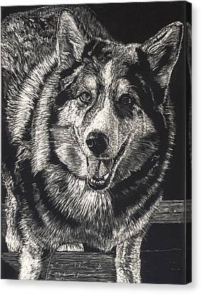 Huskies Canvas Print - Sarge The Dog by Robert Goudreau