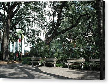 Savannah Historical District Park Benches And Trees Canvas Print