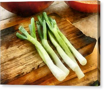 Onion Canvas Print - Scallions by Susan Savad