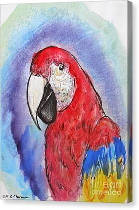 Scarlet Macaw Canvas Print by M C Sturman