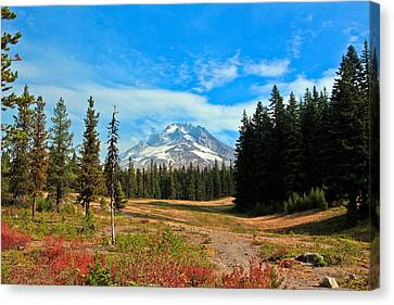 Scenic Mt. Hood In Oregon Canvas Print by Athena Mckinzie