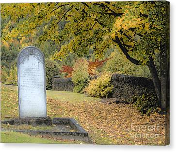 Scenic Resting Place Canvas Print by Karen Lewis