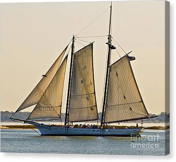 Scenic Schooner Canvas Print by Al Powell Photography USA