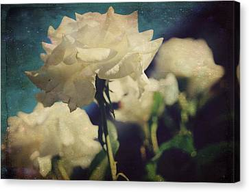 Scent Canvas Print by Laurie Search