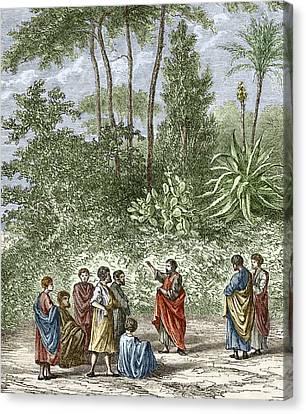 School Of Pythagoras In Croton Canvas Print by Sheila Terry