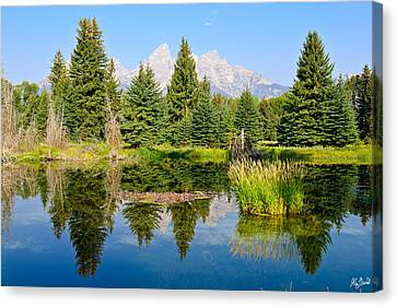 Schwabacher Landing Still Waters Canvas Print by Greg Norrell