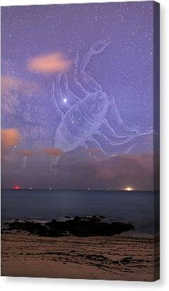 Scorpio In A Night Sky Canvas Print by Laurent Laveder