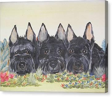 Scottish Gardeners Canvas Print by Rachel Carmichael