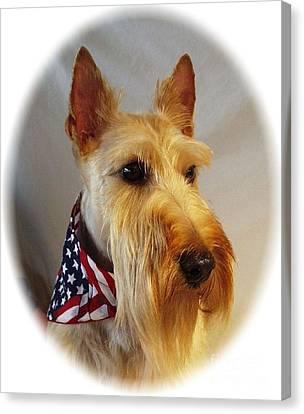 Scottish Dog Canvas Print - Scottish Terrier - Scotty 353 by Larry Matthews
