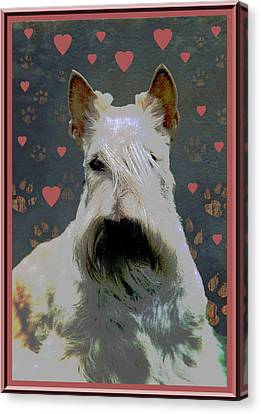 Scottish Dog Canvas Print - Scottish Terrier by One Rude Dawg Orcutt