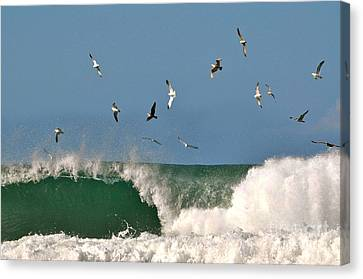 Canvas Print featuring the photograph Sea And Spray by Johanne Peale
